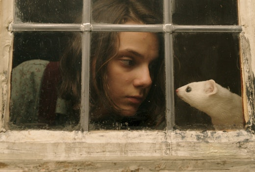 Lin-Manuel Miranda, James McAvoy, and Ruth Wilson Clash in HBO's Epic Trailer for HIS DARK MATERIALS, Premiering Nov. 4 Only on Crave